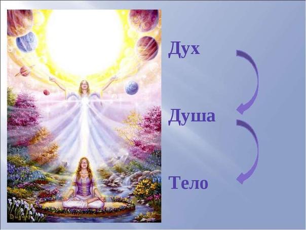душа и дух душа (единица, суть) - энергетическая конструкция тонкого плана, позволяющая осознавать своё «я» и себя в мире как обособленную индивидуальность. душа способна существовать вне