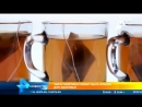 ШОК новость, Вы об этом не знали. Жевательная резинка, чай, зубная паста. Опасные добавки, от которых отказалась вся Европа.