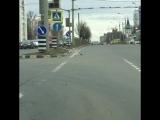 Голубь на пешеходном переходе