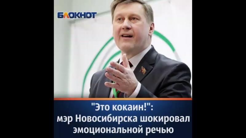 Странное заявление о кокаине и других стимуляторах сделал мэр Новосибирска Анатолий Локоть на вручении «Народной премия НГС»