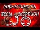 СКОРПИОН И ВЕСЫ, САМАЯ ТОЧНАЯ СОВМЕСТИМОСТЬ (ВЕСЫ И СКОРПИОН) ★♛★