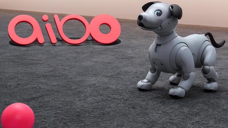 Sony Aibo - A.I. Robot Dog - CES 2018 Winner