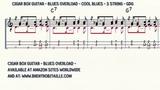 Cigar Box Guitar - Blues Overload - Cool Blues - 3 String Guitar - GDG