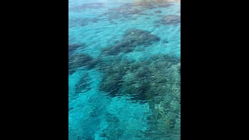 Marea roșie Egypt