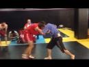 Международный турнир «Летний Кубок ЦФО» Федерации боевого самбо России