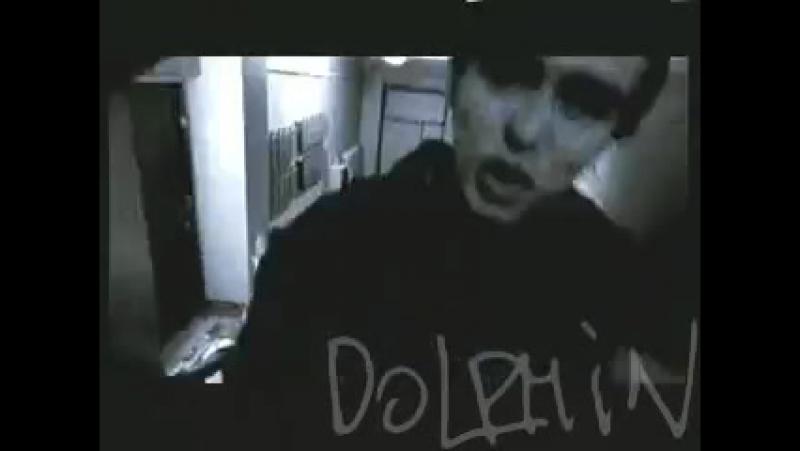 Дельфин _ Dolphin - Дилер