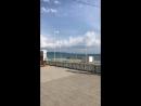 Отдых, жилье в Абхазии,Гагра,Сухум,Афон Абхазия — Live