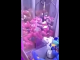 Man Hacks Claw Machine Game With Magnet