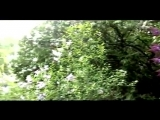 Група Лукьяновка - Мамина сирень.mp4