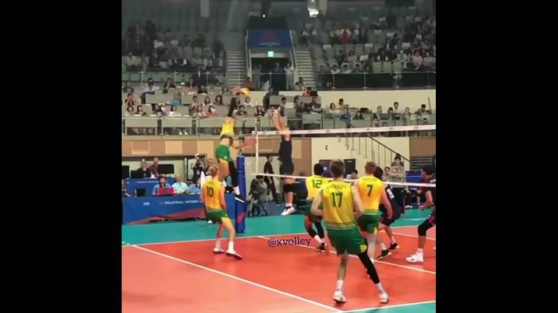 Австралия волейбол