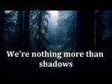INSOMNIUM - Shadows Of The Dying Sun (lyrics)