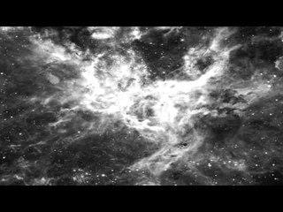 Alrakis - Papillon (N159-5)