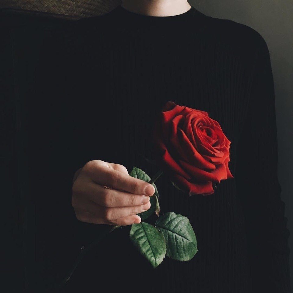 Картинки с розой в руке на аву