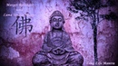 Margot Reisinger Lama Tenzin Sangpo - Long life Mantra