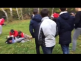 FOREST 乡 HOOLIGANS   BY PANIN