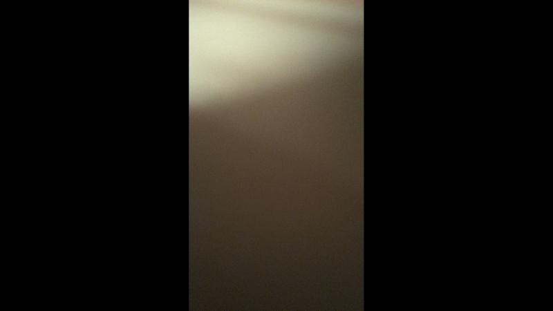 Диана Шевель — Live
