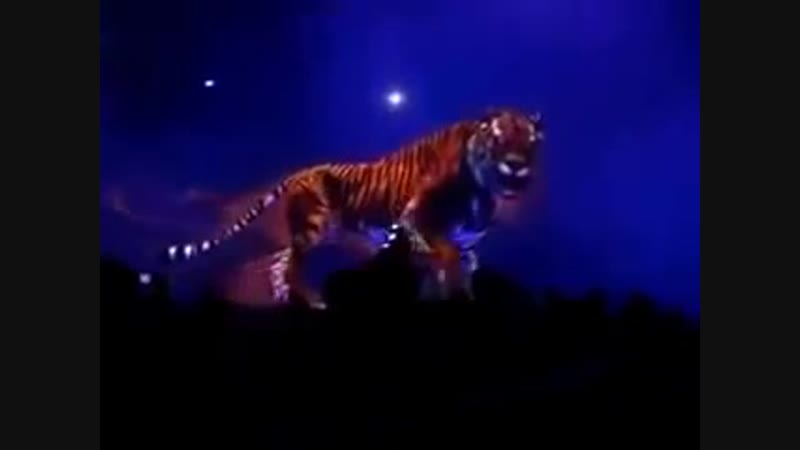 Bluebeam Project Hologram Technology 3D Tiger ,MUST SEE