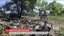 У Запоріжжі догхантери заживо спалили цуценят які жили в парку