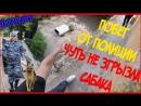 Ruslan TAGIEV ПОБЕГ ОТ ПОЛИЦИИ ЗАБРОШЕННАЯ БОЛЬНИЦА УБЕГАЕМ ОТ НЕМЕЦКИХ ОВЧАРОК