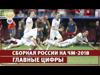 Выступление сборной России на ЧМ-2018 в цифрах