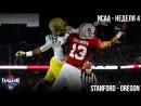 Stanford - Oregon - Студенческий Американский Футбол