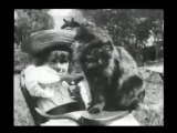 The Little Girl and Her Cat (1899) - LOUIS LUMIERE - La petite fille et son chat