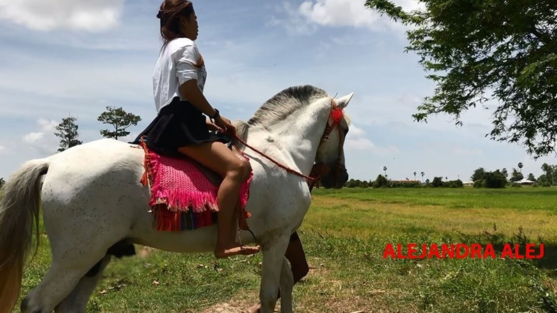 How To Bather Horse By Girl At Countryside and Video Riding Horse Trainer Old Man 2018