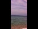 пляж в сосновке