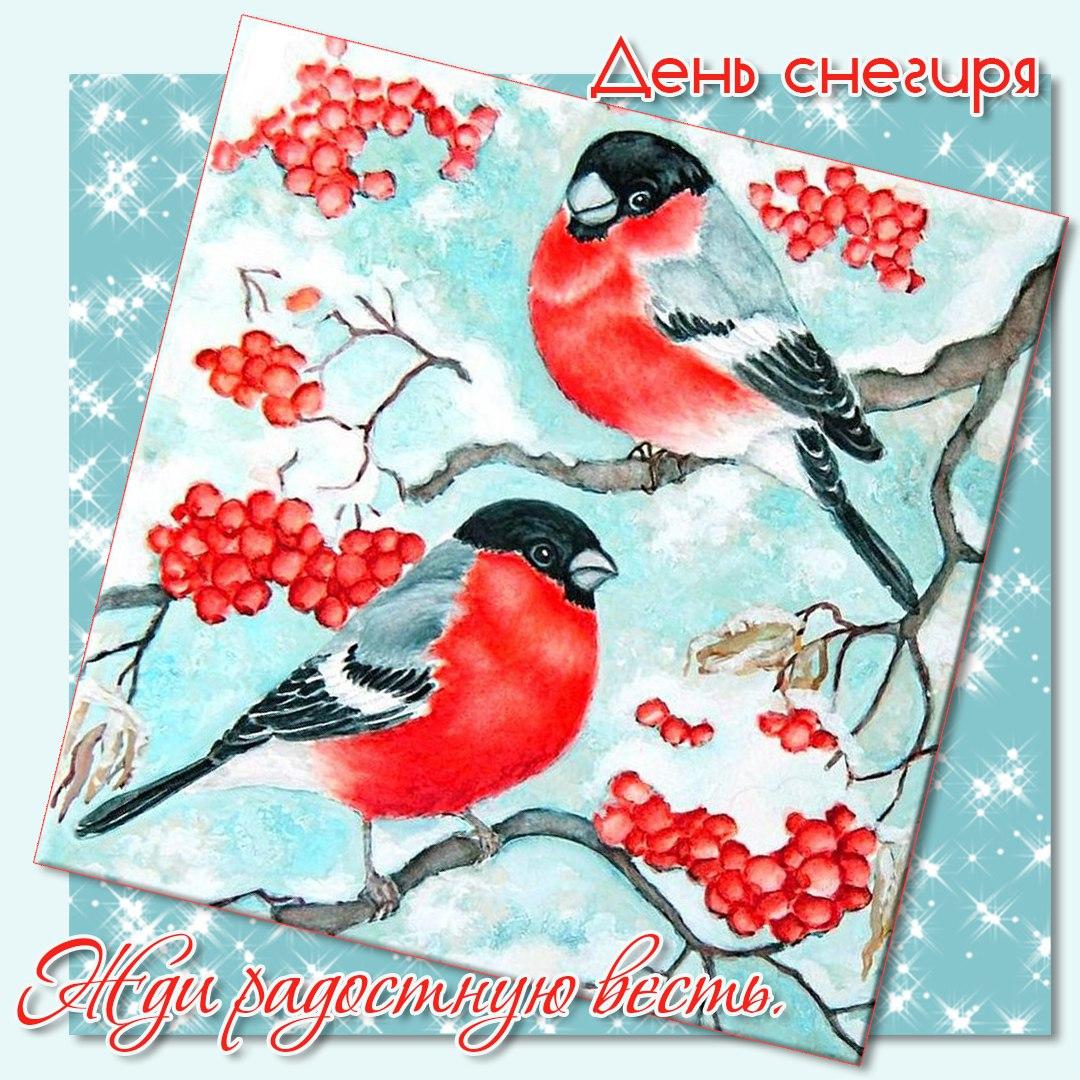утро с снегирями открытки