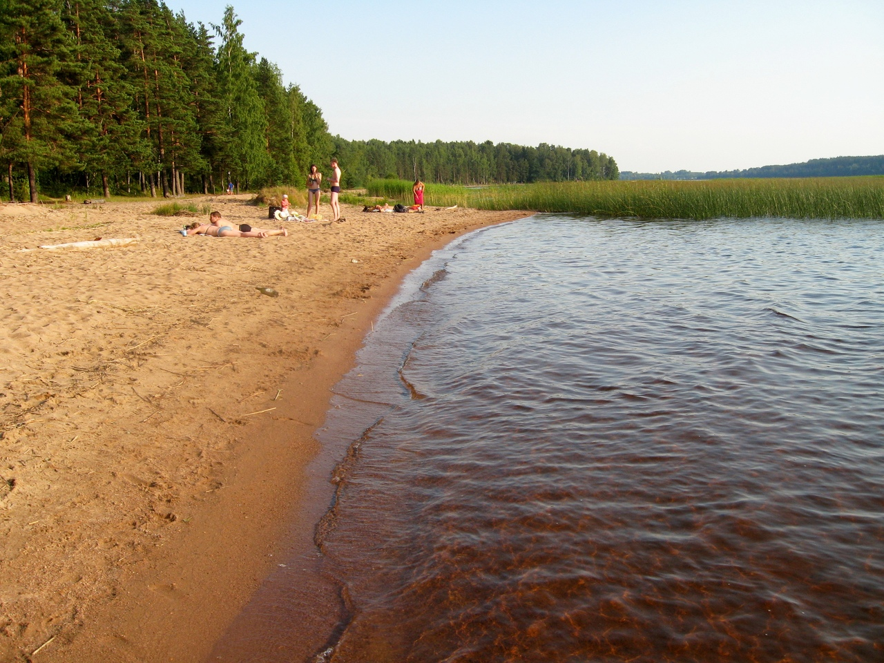 Озеро пионерское рыбалка с берега