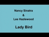 Nancy Sinatra &amp Lee Hazlewood - Lady Bird. Karaoke.