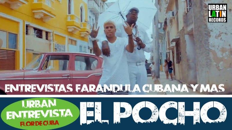 FLOR DE CUBA - ENTREVISTA - EL POCHO