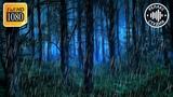 Ночной дождь с грозой и громом 5 часов. Звуки природы шум дождя для сна и релакса