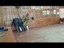 Галкин - АнтоновУсов ( 1 против двух 2 минуты)