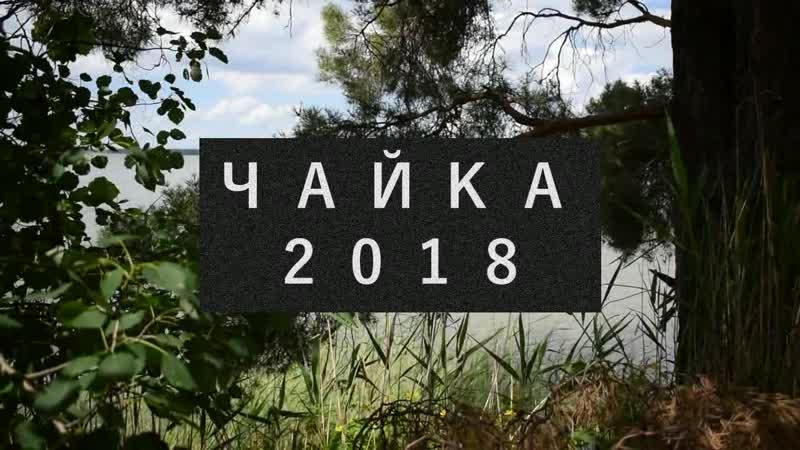 Чайка 2018 - Лучший лагерь на земле