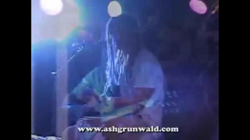 Ash Grunwald Money live