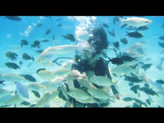 Баська. Море. Рыбки.