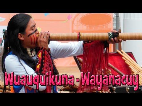 Wuauquikuna Wayanacuy 26 05 2013
