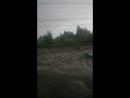 Дождик в командировке