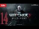 📺 The Witcher 3 - Wild Hunt - НОВИГРАД - Прохождения № 14 🐺