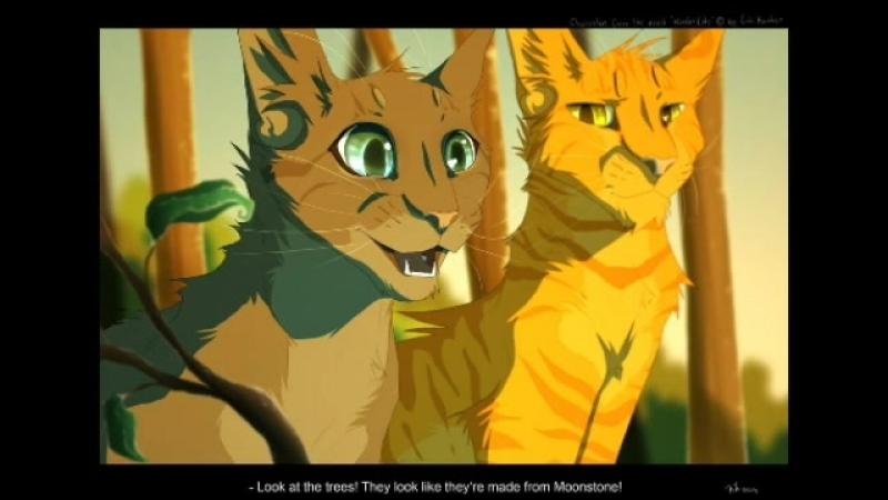 Клип коты воители Beliver