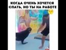 Тюлень-шутник ))
