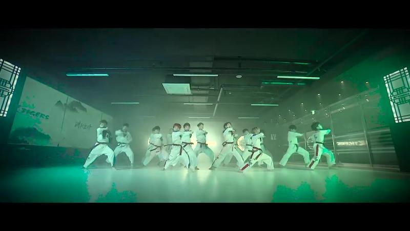 SF9 부르릉 ROAR Taekwondo ver 태권도버전