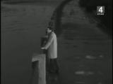 Полад Бюль-Бюль оглы - Позвони (видеоклип).