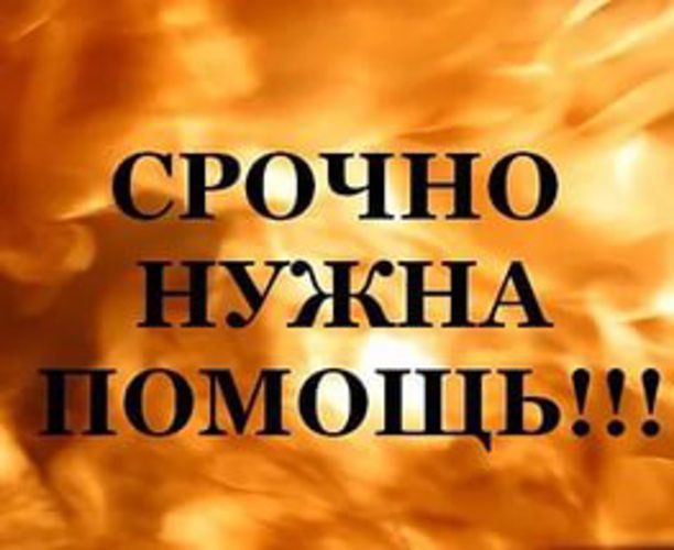 Семье погорельцев из Балабанова нужна помощь