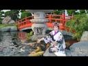 Công Viên Cá Koi RinRin Park - Vườn Nhật Bản ở TP. HCM