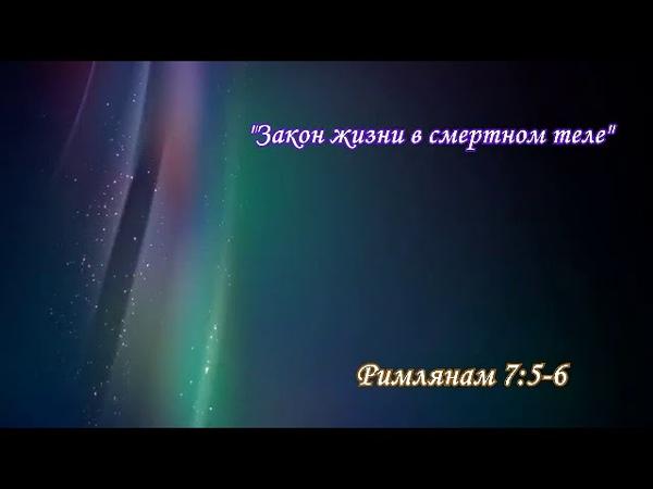 «ХУКАТ» ~5771~ ч.4 «Бедный я человек! кто избавит меня от сего тела смерти?» А.Огиенко (01.07.2011)
