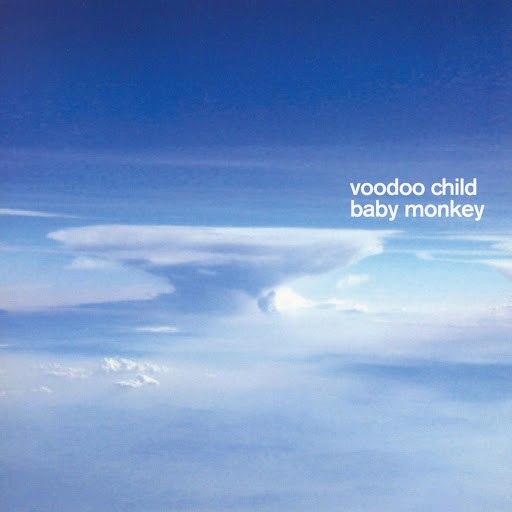 Voodoo Child альбом Baby Monkey