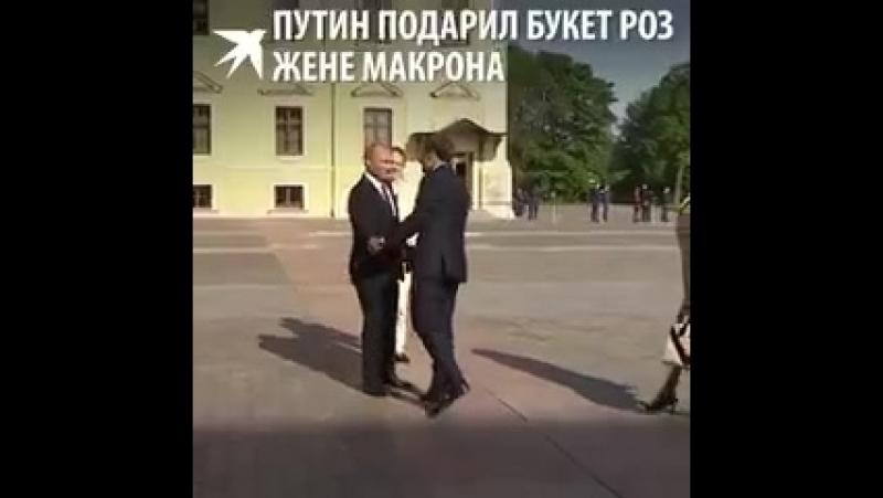 Рукопожатие и букет: Владимир Путин встретил чету Макрон в Константиновском дворце.