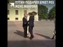 Рукопожатие и букет Владимир Путин встретил чету Макрон в Константиновском дворце.